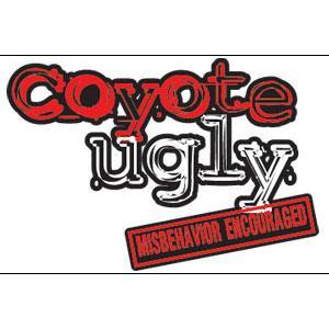 Coyote Ugly | NYNY Hotel & Casino